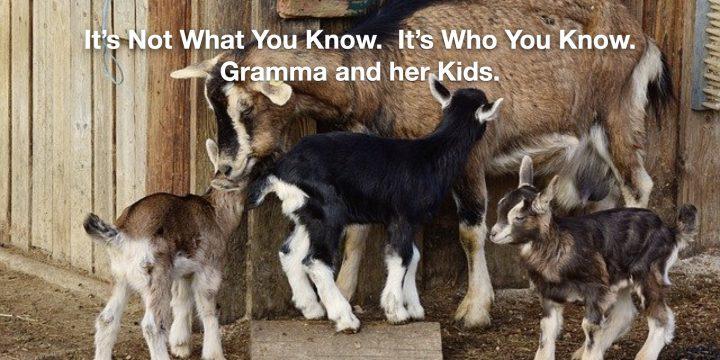 Wise Gramma!